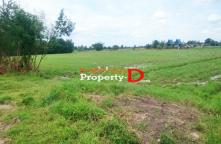LP60080122-Urgent sale of land in Ratchaburi area of 12 rai good location in Nong Krathum Pak Tho district.